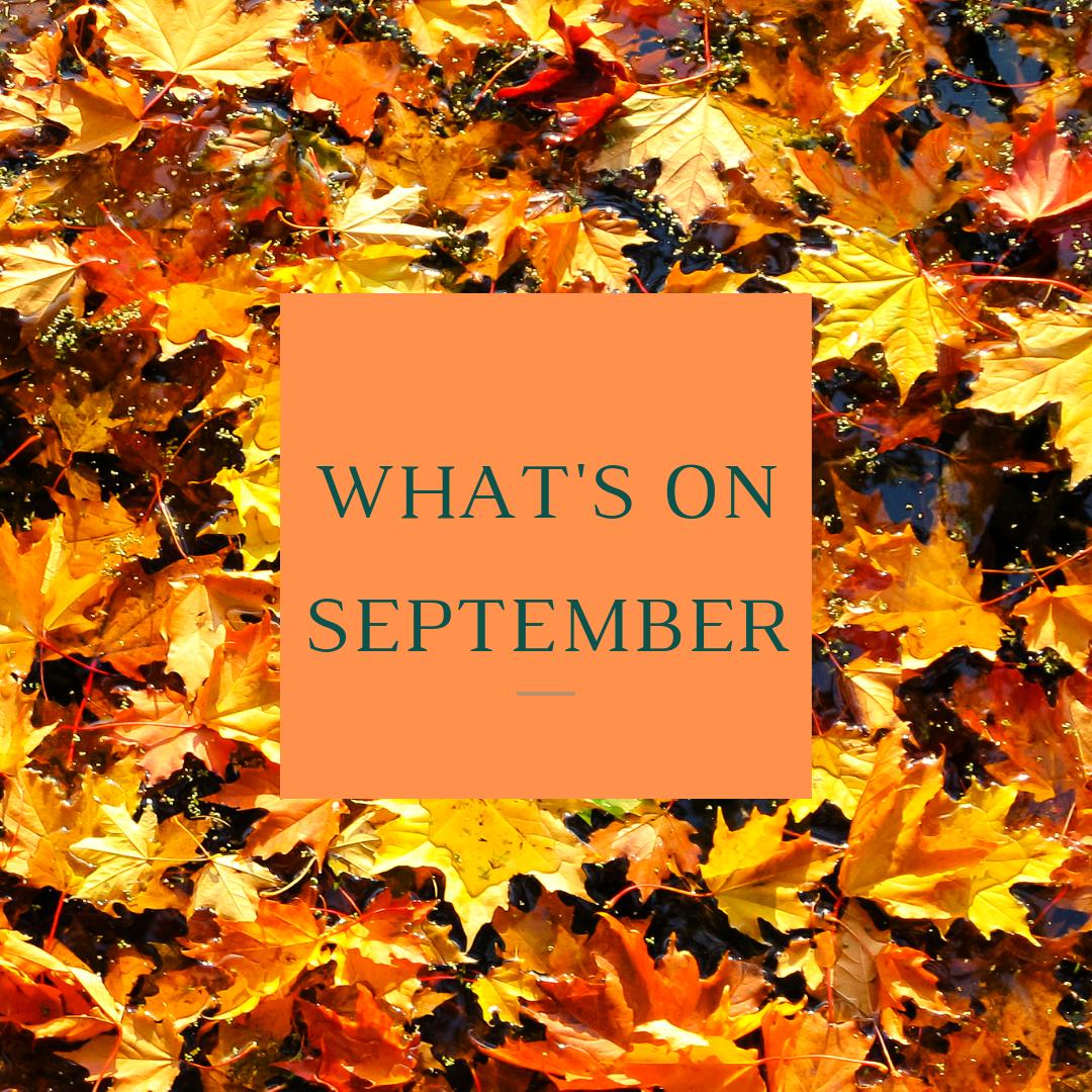 What's On Tunbridge Wells - September 2019